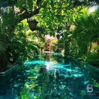 216 Best images about Swimming pools on Pinterest | Water ...