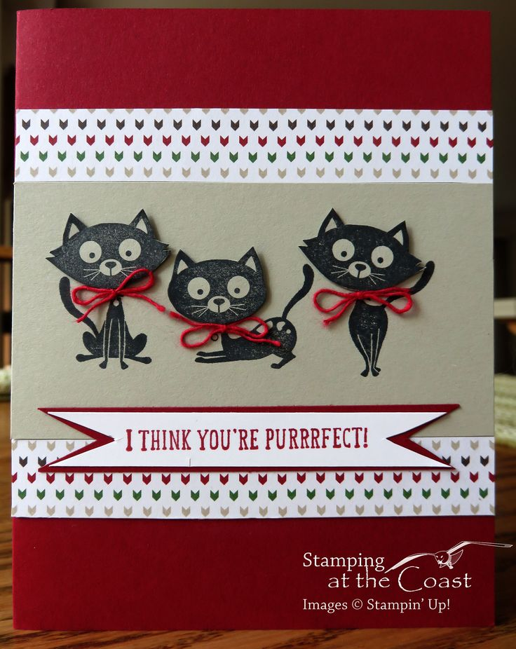 Stampin Up You Little Furball Cards Ive Made