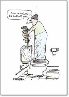 1000+ ideas about Property Management Humor on Pinterest