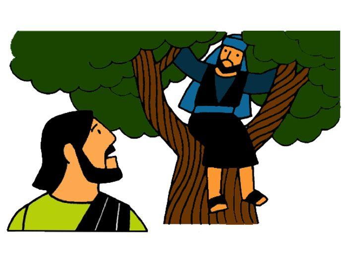 77 Best Images About Zaccheus On Pinterest Maze Tree