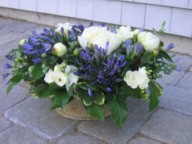 Blue Agapanthus, White Freesia And White Peonies. Designed