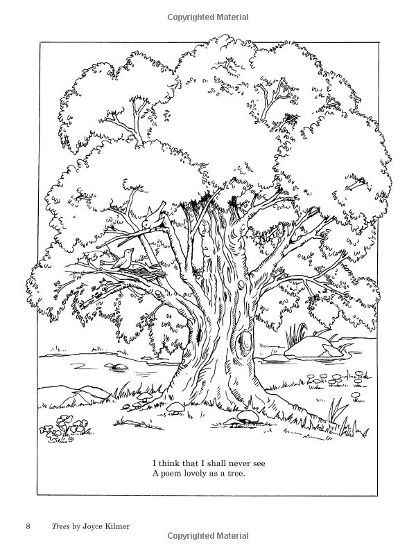 Jabberwocky Poem Drawing Sketch Coloring Page