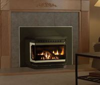 17 Best ideas about Fireplace Inserts on Pinterest ...