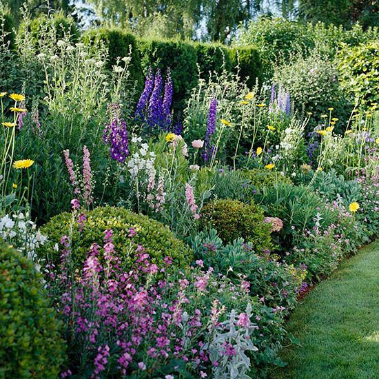 25 Best Ideas About Herbaceous Border On Pinterest Garden