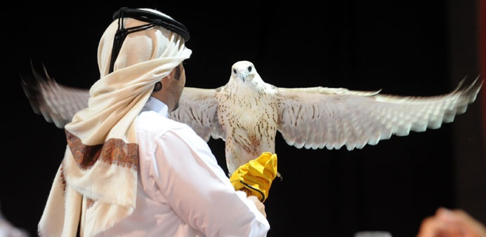 17 Best Images About Qatar Falconry On Pinterest Cause
