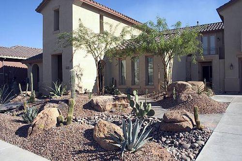 high desert landscaping
