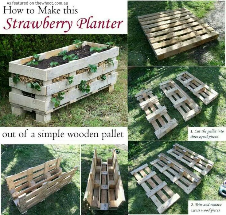 17 Best Images About Strawberry Garden Ideas On Pinterest