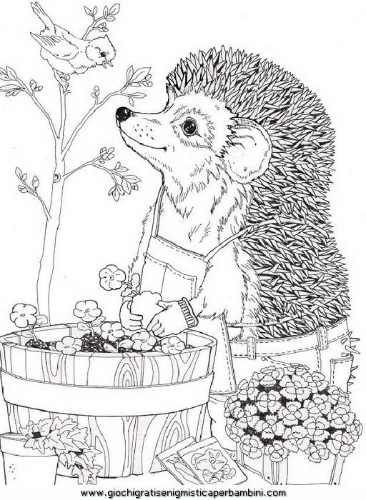 spring_41 Spring coloring pages for adults and teenagers