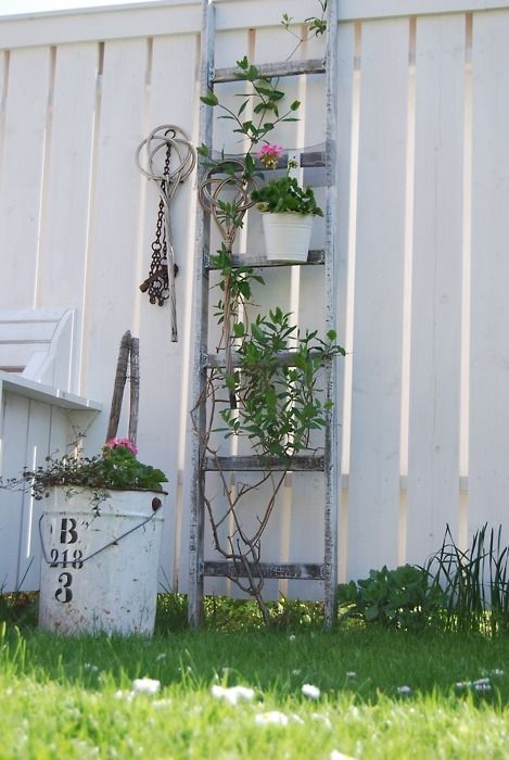 1000 Images About Recycled Ladders On Pinterest Shelves