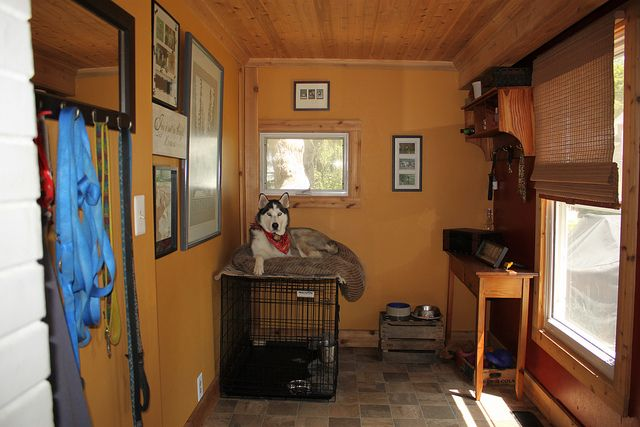 Dogs roommud room by collettembowe via Flickr  Pet Ideas  Pinterest  Maya Window and Crates