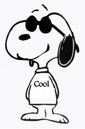 1000+ images about Snoopy/Joe Cool on Pinterest