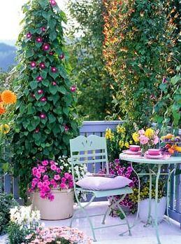 25 Best Ideas About Balcony Gardening On Pinterest