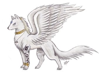 wolf drawings cute wings drawing wolves awesome easy drawn animal form anime draw hyrulara human animals simple sketch dragons tips