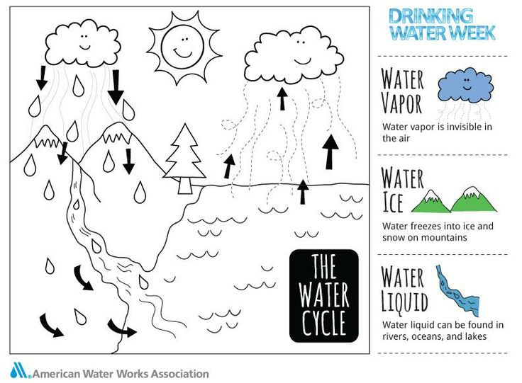 48 best images about Water Cycle Lessons on Pinterest