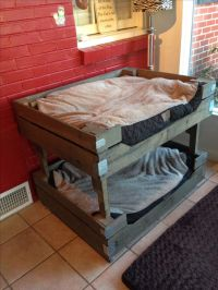 Pallet Dog Bunk Beds | Pets | Pinterest | Dogs, Beds and ...