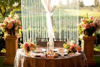 17 Best images about Wedding Backdrop Ideas on Pinterest ...