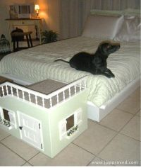 14 best images about Dog stuff on Pinterest   Stairs, Dog ...