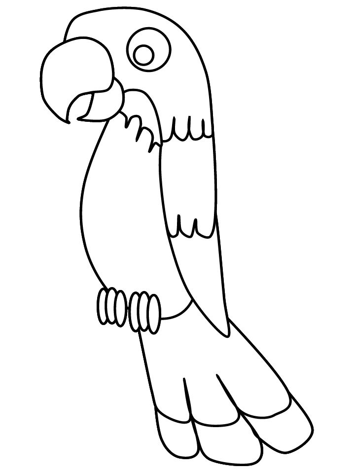 Parrot coloring page: print out on red construction paper