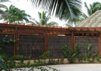 Instant privacy, instant hedge, pool fence compliant ...