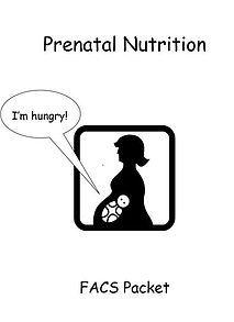 10+ best ideas about Prenatal Development on Pinterest