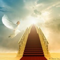 95 best ideas about Heaven on Pinterest | Stairway to ...