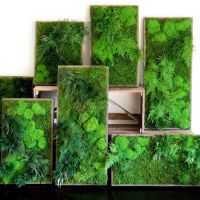 17+ best ideas about Moss Wall Art on Pinterest | Moss ...