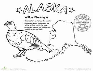 Science worksheets, Worksheets and Alaska on Pinterest