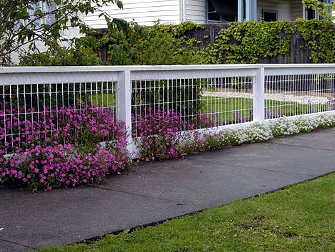 The 25 Best Ideas About Dog Fence On Pinterest Fence Ideas
