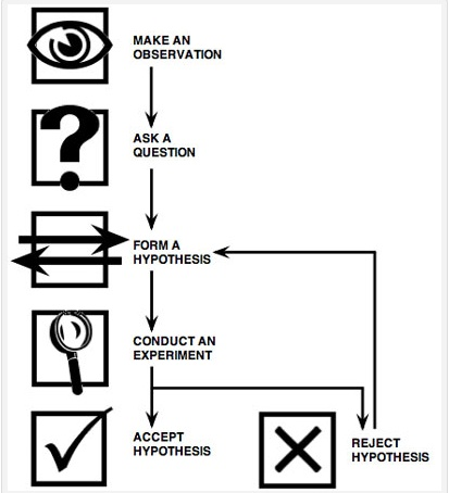25 best images about The Scientific Method on Pinterest