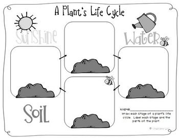 140 best Graphic Organisers images on Pinterest