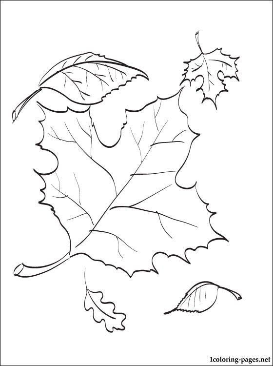 17 Best ideas about Autumn Leaves Craft on Pinterest