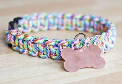 12 Cool Diy Dog Collars Shelterness
