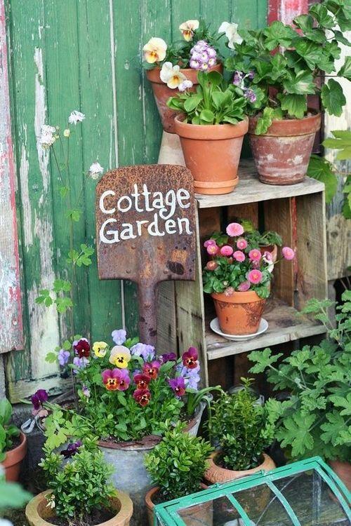 17 Best Images About Gardening On Pinterest Gardens Window