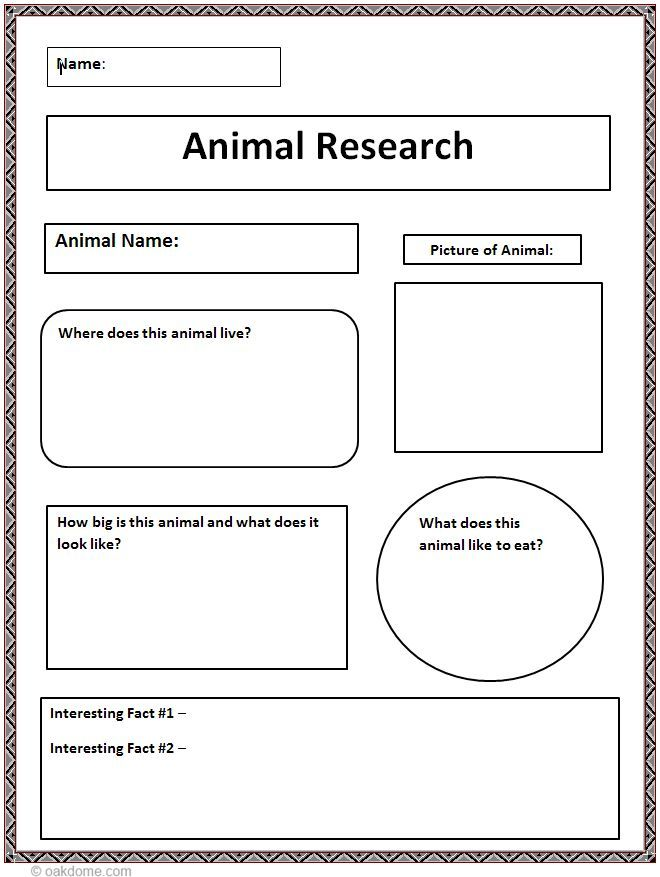 Third Grade Animal Research Paper Research Paper Writing Service