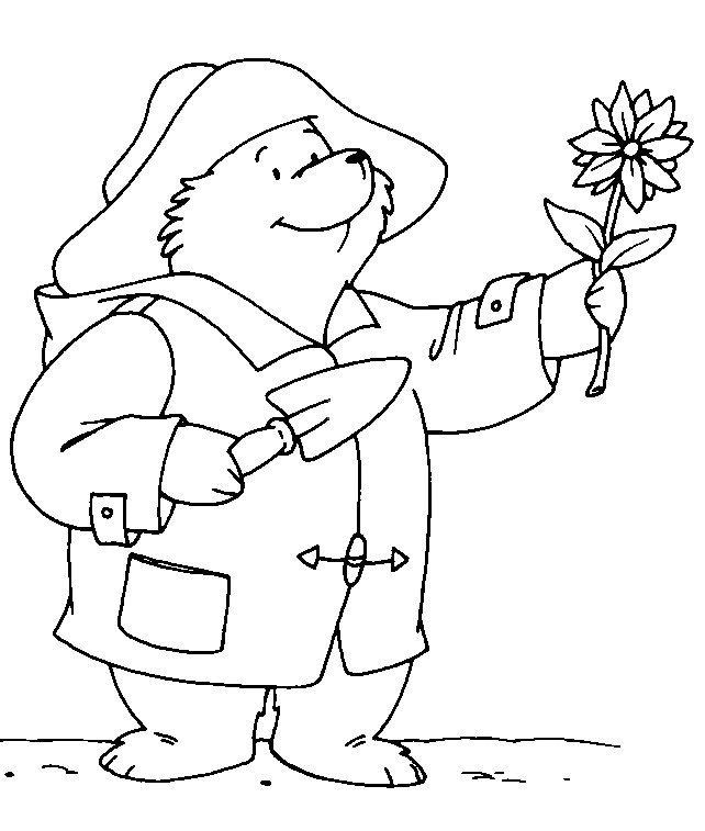 140 best images about bears Paddington on Pinterest