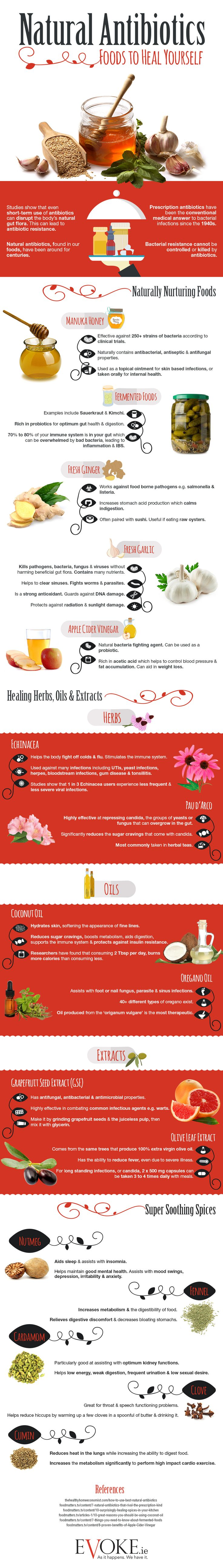 (Infographic) Natural Antibiotics, Foods to Heal Yourself