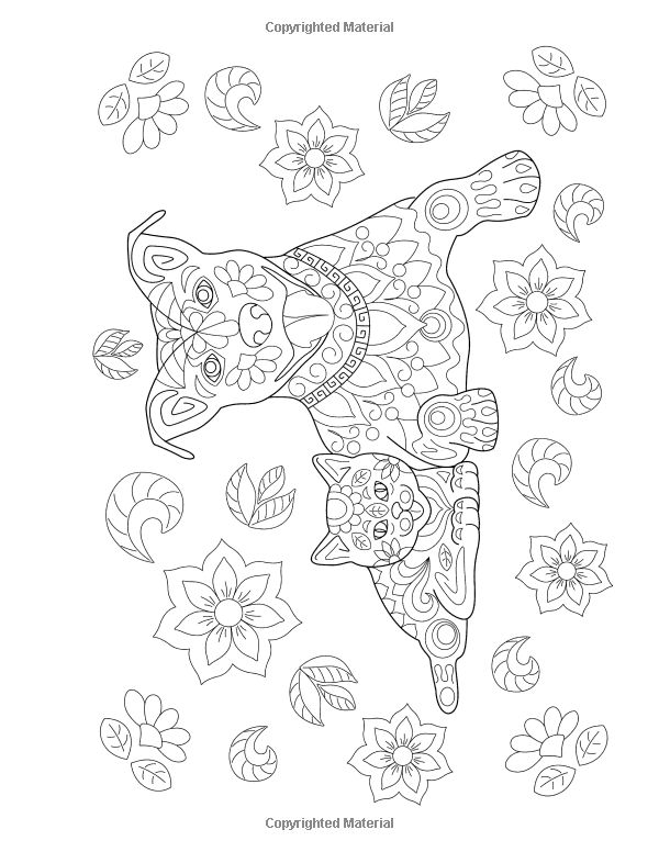 867 best Colouring pages Animals images on Pinterest