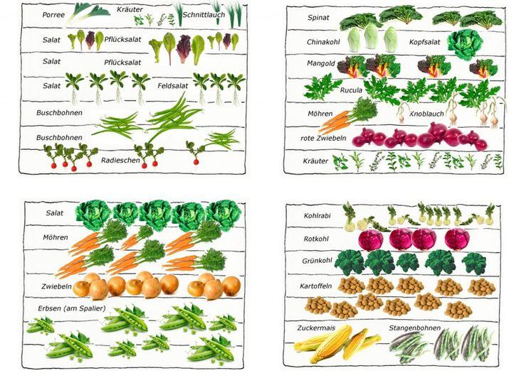 selbstversorger garten l - gartentore, Garten und erstellen