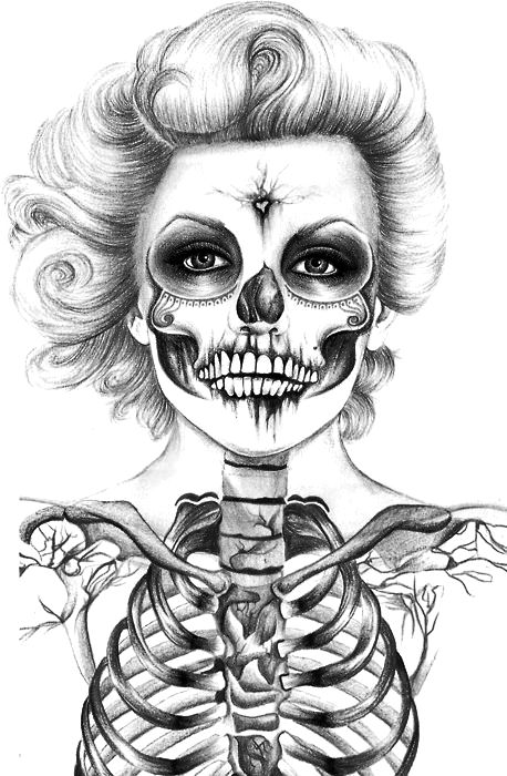 250 best images about Skulls on Pinterest