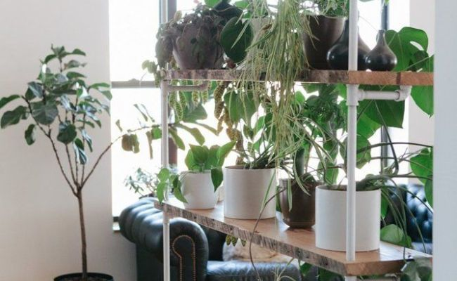 506 Best Images About Industrial Pipe Shelves On Pinterest