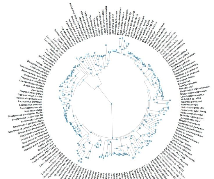 1000+ images about VISUALISATIONS on Pinterest