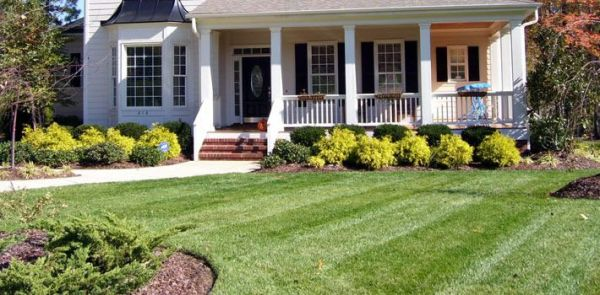 simple front yard landscape plan