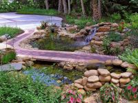 59 best ponds & water features images on Pinterest