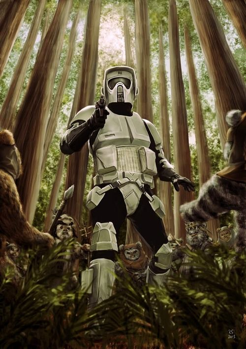 32 Best Images About Scout Trooper On Pinterest Pistols