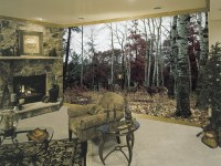 """Deer Wildlife Wall Mural (""""don't be fooled by cheap ..."""