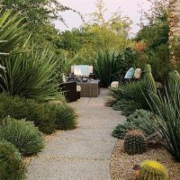 47 best images about Drought Tolerant Landscaping on ...