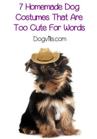 1000+ ideas about Dog Costumes Homemade on Pinterest ...