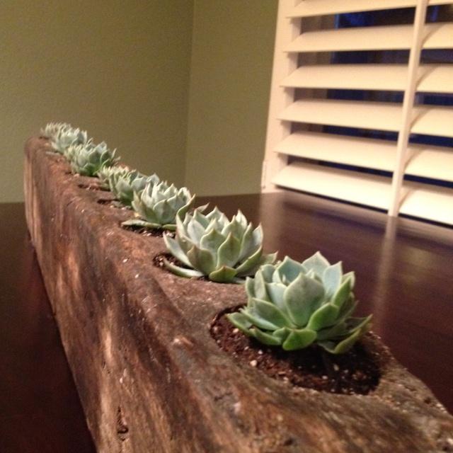 simple kitchen table centerpiece ideas cape cod design 8 best images about sugar molds on pinterest | ...