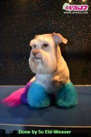semi permanent dog hair dye pet
