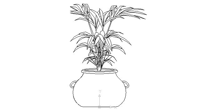 indoor plant in clay pot in Landscaping / Plants Bushes